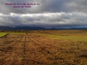 Fuente: Bodegas Cerro del Aguila (Facebook)