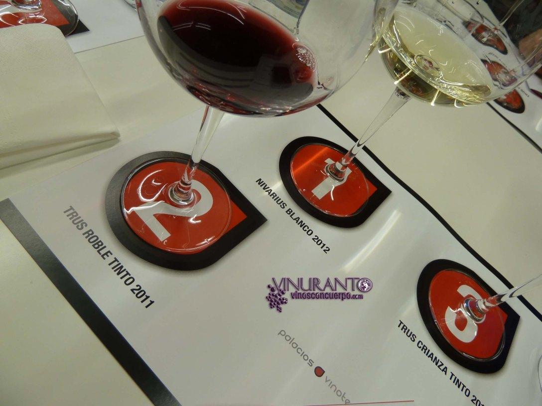 Cata de vinos en Madrid.