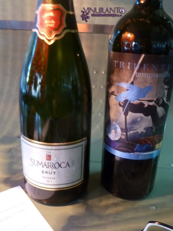 Los vinos que se cataron este especial encuentro.