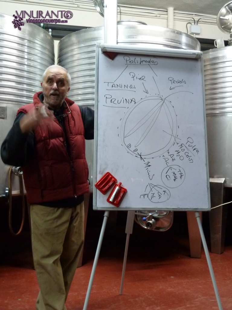 Carlos, enólogo de Bodegas Gosalbez Orti, en un momento de su master class