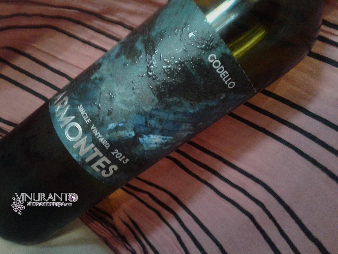 Armontes Single Vineyard 2013. D.O. Valdeorras. Galicia.
