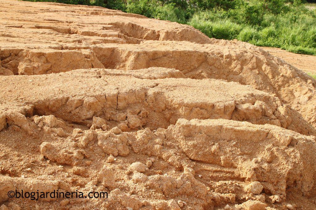 Terrenos arcillo-arenosos
