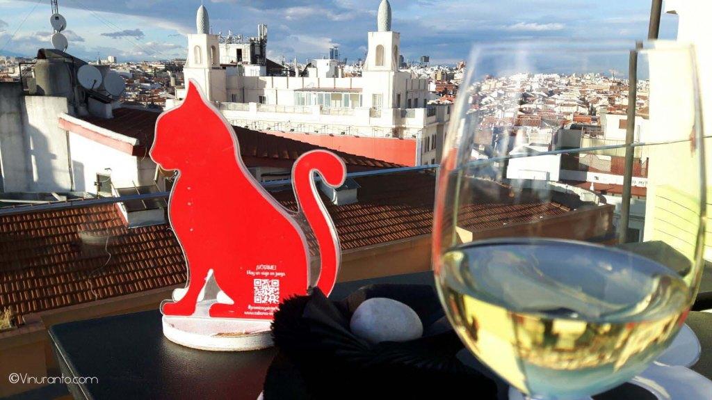 Premios Gato. Vistas desde la azote Hotel Índigo.